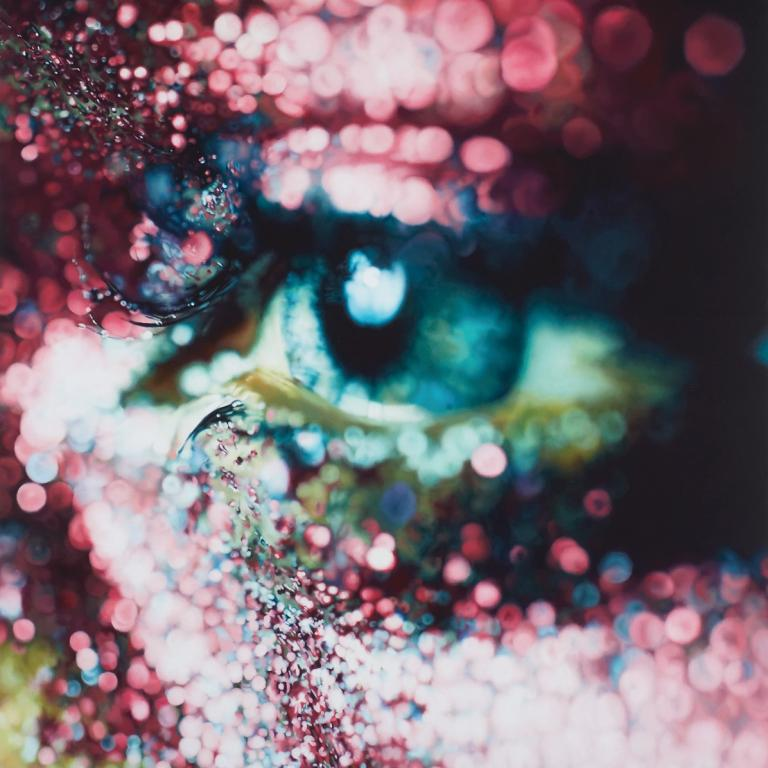 Signature image for Marilyn Minter exhibition