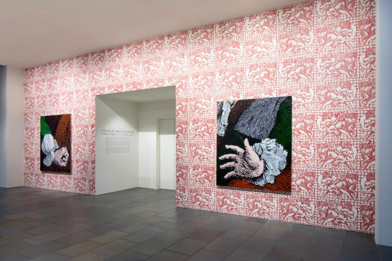 Installation view of Charlie Billingham exhibition at SCAD Museum of Art